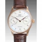 IWCIW500113 スーパーコピー