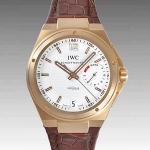 IWCIW500503 スーパーコピー